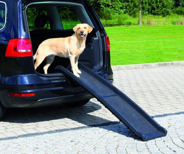 Loopplank auto plastiek (tot 90kg) Zwart 40x156CM